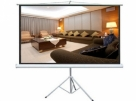 Tripod Projection Screen 60 x 60 Inch