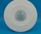 Flushbonding Ceiling PIR Sensor motion Switch adjustable sensitivity delay distance Intelligent timing switch AC220V 336q