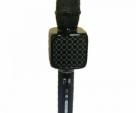Original YS-69 Voice Changer wireless Bluetooth Karaoke Microphone