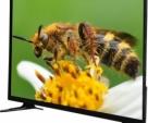 CHINA 32 inch LED TV