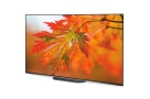 SONY-55-inch-A9G-VOICE-CONTROL-OLED-4K-ANDROID-TV