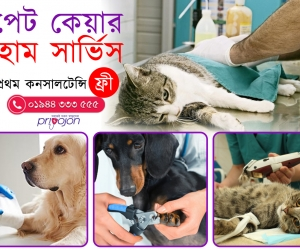 Pet-Care-Service-In-Sutrapur-Dhaka