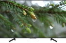 SONY-BRAVIA-49-inch-X8000G-4K-ANDROID-VOICE-REMOTE-TV