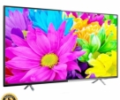 THL 24 INCH (Fiber/Black)DK4 BASIC LED HD TV